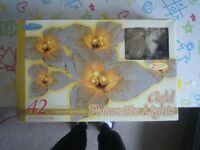 42 Gold Poinsettia Lights