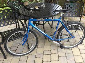 Blue Raleigh Mantaray Bike