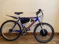 Electric mountain bike /E bike 1000w