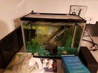 Fish / Shrimp Tank