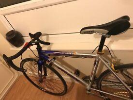 Bike Mint