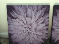 2 large canvas paintings - peonies