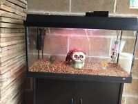 Over 2.5 ft juwel fish tank 100l full set up with stand filter heater light gravel ornament all work