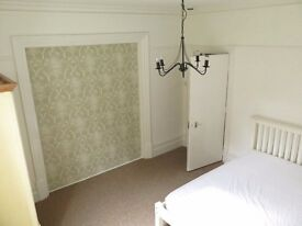 Large Double Room In Aldershot in Recently Renovated Detached Victorian House with Large Garden
