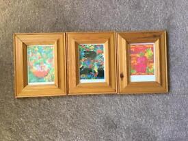 Three Lisa V Kearney framed prints.