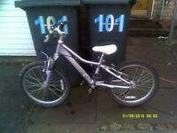 girls giant alloy mountain bike fully working