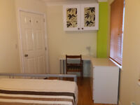 Double Room + Shower To Let Near Airport + NHS Bournemouth - In Christchurch