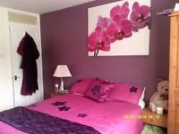 canvas and bed sets