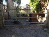 Heavy galvanised gate