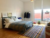Extra Large Double Room in shared apartment