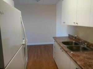 Nicely Renovated 1 Bdrm Suite Avail Today!    $710.00/mth