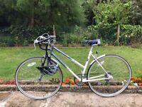 """LADIES WOMEN ADULT EMMELLE RAGLINE 700CC WHEEL 19"""" FRAME 5 SPEED BIKE BICYCLE"""
