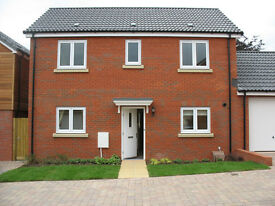 Modern detached 3 bedroom home with garage for rent in excellent decorative order throughout