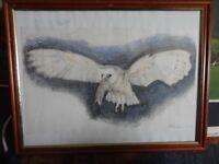 Original Owl painting in frame