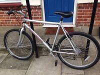 Aluminium Radford Bike