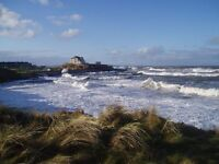Holiday cottage. Parrot Cottage on Northumberland coast sleeps 5. Weeks from £240 to £510.