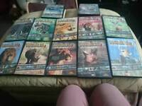A collection of 12 animal dvds