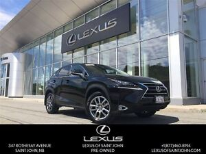 2015 Lexus NX 200t Luxury Package with Navi
