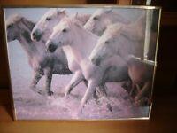 Framed pitcher of running Horses only £10