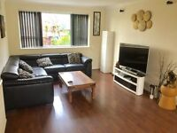 Lovely Room in Crouch End