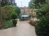 Large room in quiet Chiswick