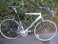 Barracuda Canyon Racing Bike