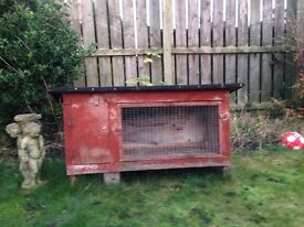 Guinea pig and rabbit hutch / outdoor cage