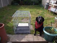 """medium dog cage 30"""" x 24"""" x 21""""."""