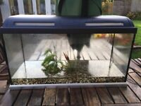 Fish tank with stand and pump. Length 31 inch , depth 16 inch