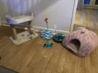 Cat scratching post, bed and toys for sale