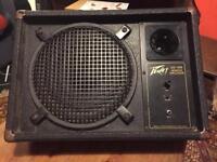 Peavey ES-12M passive monitor speaker
