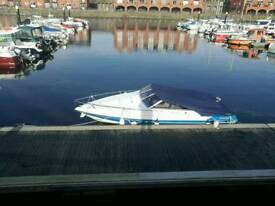Wellcraft 19.2 family speed boat new engine inboard
