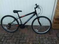 Small mountain bike