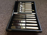 Fish Knives & Forks. 6 knives, 6 forks. Mint condition - never used. Chrome plated.
