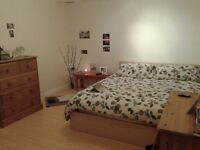 Spacious, high-quality room to rent in owner-occupied house close to centre and Stokes Croft
