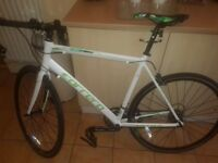 Adults Carrera racing bike immaculate condition only 2 months old