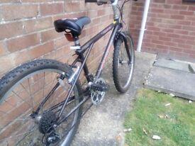 Children's mountain bike for sale