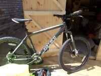 Carerra Vengance Bike
