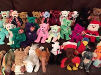 TY Beanie Babies Collection x77