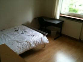 Excellent flat share in West End