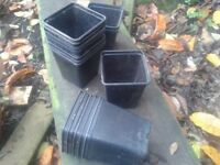 """Plant pots ( Used ) 9cm / 3 1/2"""" Over 300"""