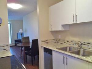 Upgraded Bachelor Suites Available!