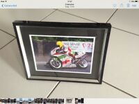 Joey Dunlop Framed Print