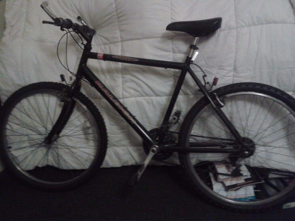 Raleigh Max Ogre Mountain Bike