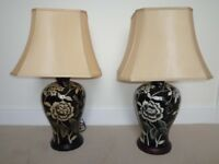 Pair of beautiful china table lamps