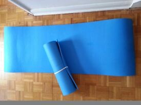 Two Exercise/Camping Mats