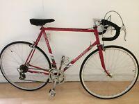 Raleigh Pursuit Retro racer bike