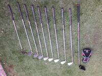 Full Set of Rogue Progeny Irons 3-9 with PW, including nice IQ Driver and classic Justin Putter