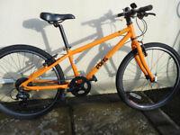 62 Frog Bicycle