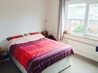 Bright double room in a North London vegetarian/vegan houseshare!